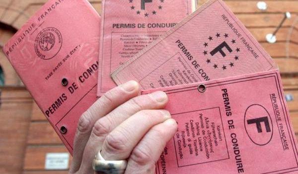 Les fraudes au permis de conduire